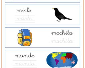 Palabras que empiezan por la letra m, recursos educativos