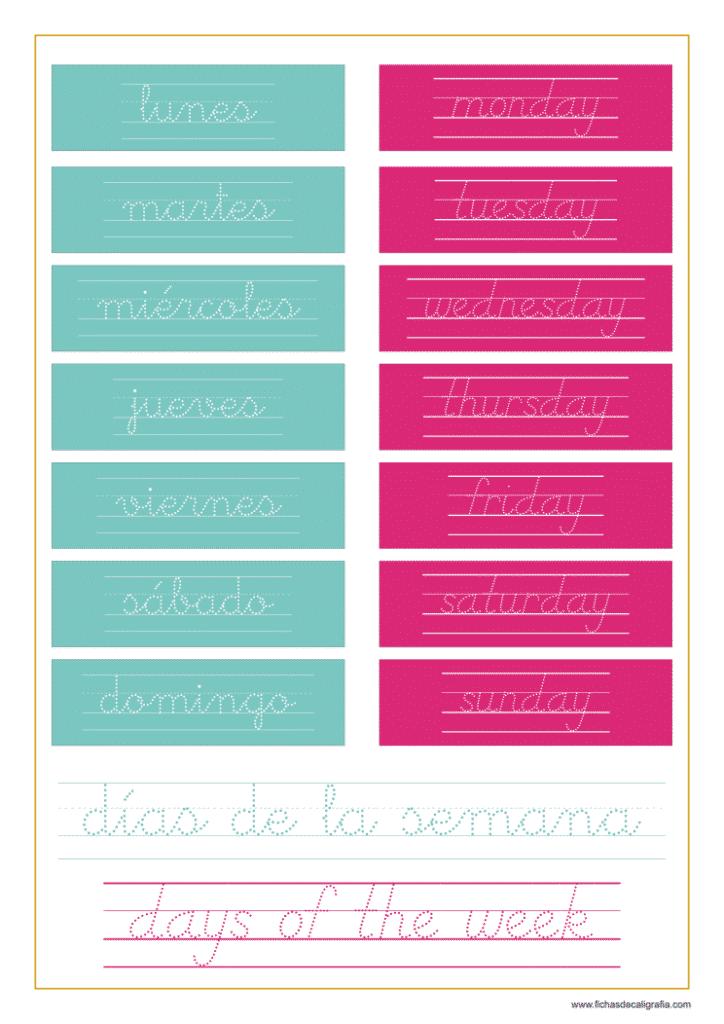 Ficha con los días de la semana en inglés y español